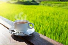 Kop van hete thee in aard stock fotografie