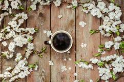 Kop van hete zwarte koffie in vrouwelijke handen op een houten uitstekend bureau met de lente witte bloemen apricorn Het concept  Royalty-vrije Stock Afbeelding