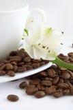 Kop van koffie en zaad Royalty-vrije Stock Foto