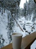 Kop van koffie in het bos stock foto's