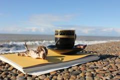 Kop van koffie op de waterkant Royalty-vrije Stock Afbeelding