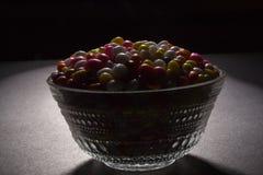 Kop van Sugar Coated Colorful Fennel Seeds stock foto's