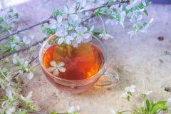 Kop van zwarte thee met de takken van de de lentebloesem op oude houten Royalty-vrije Stock Afbeeldingen