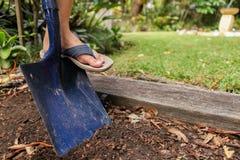 Kopać w ogródzie z rydlem Przygotowywać ogród dla zasadzać Obrazy Royalty Free