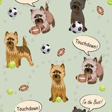 Kopa sport ilustracji