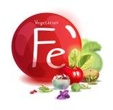 Kopaliny żelazo w jarskim odżywianiu Rośliien foods wysocy w żelazie Podstawy zdrowy łasowanie ilustracji