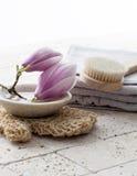 Kopalna filiżanka z kamieniami i kwiatem dla zen postawy Obraz Stock