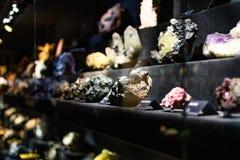 Kopalna kolekcja w muzeum zdjęcie stock