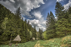 Kopaonik mountain in Serbia stock image
