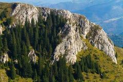 Kopaonik nationalpark, Serbien Royaltyfri Fotografi