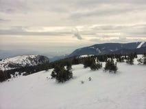Kopaonik nell'inverno Fotografia Stock
