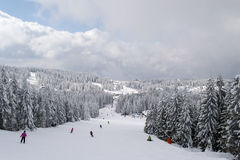 Kopaonik ski slope Royalty Free Stock Photos