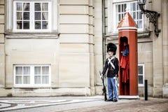 KOPENHAGEN, DENEMARKEN - JULI 2015: Koninklijke het Levenswachten bij Amalienborg-Paleis stock foto's