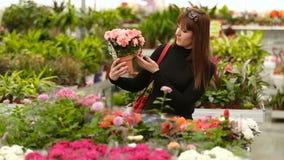 Koper in een bloemwinkel stock videobeelden