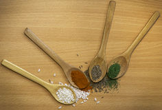 Koper, oregano, czerwony pieprz, pitinac na drewnianych łyżkach Zdjęcia Royalty Free
