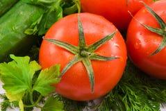 koperkowy pomidor Obrazy Royalty Free