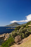 Kopf- Cape Town des Löwes, Südafrika stockfotografie