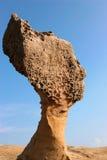 Kopf der Dame Stockbild