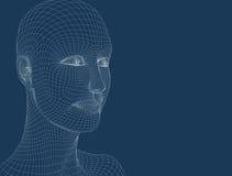 Kopf der Frauen 3d auf dem blauen Hintergrund Lizenzfreie Stockfotografie