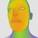 Kopf der Person von einem Rasterfeld 3d Drahtbaumuster des menschlichen Kopfes Menschlicher Polygon-Kopf Gesichts-Scannen Ansicht lizenzfreie abbildung