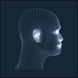 Kopf der Person von einem Rasterfeld 3d Menschlicher Kopf-Modell Gesichts-Scannen Ansicht des menschlichen Kopfes geometrisches D Lizenzfreie Stockfotografie