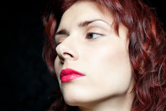 Kopf der Schönheit mit dem roten Haar Lizenzfreie Stockfotos