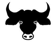 Kopf des Büffels Lizenzfreies Stockfoto