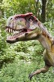 Kopf des Dinosauriers Stockfotos
