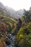 Kopf des Fresser-Flusses im Herbst Lizenzfreie Stockfotos