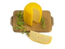 Kopf des Käses und des Majorans Stockbilder
