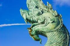 Kopf des Naka Statue-Spraywassers lizenzfreies stockfoto