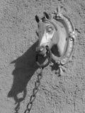 Kopf des Pferds Stockbild