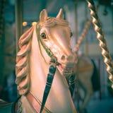 Kopf des Pferds in einem fröhlichen gehen Runde instagram Blick lizenzfreies stockbild