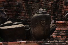 Kopf des Sandsteins Buddha in den Baum-Wurzeln bei Wat Mahathat, Ayut Lizenzfreies Stockbild
