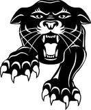 Kopf des schwarzen Panthers Lizenzfreie Stockfotos