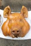 Kopf des Schweins Stockbild