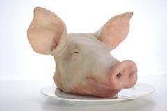 Kopf des Schweins auf einer Platte Lizenzfreies Stockbild