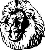 Kopf eines Löwes Stockbild