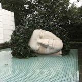 KOPF IM POOL AM HAKONE-FREILICHT-MUSEUM IN JAPAN lizenzfreies stockfoto