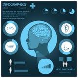 Kopf Infogaphic Infocharts Stockbild