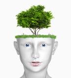 Kopf mit Baum Lizenzfreie Stockfotos