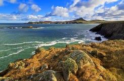 Kopf St. Davids über Whitesands-Bucht Lizenzfreie Stockfotos