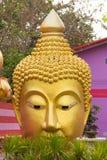 Kopf von Buddha-Statue bei Wat Sai Dong Yang Temple Phichit, thailändisch Lizenzfreie Stockfotos