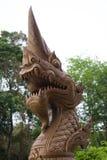 Kopf von Naga Stockfotos