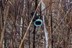 Kopfhörer hängen an den Büschen stockbilder