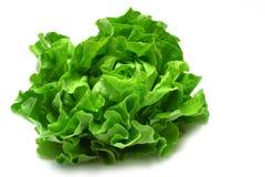 Kopfsalat Stockbild