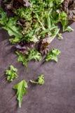 Kopfsalat auf Brown Lizenzfreie Stockfotos