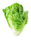 Kopfsalat auf weißem Hintergrund stockbild