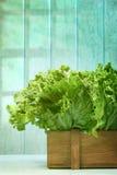 Kopfsalat im hölzernen Kasten gegen grunge Hintergrund Lizenzfreie Stockbilder