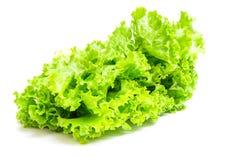 Kopfsalat (Lactuca Satival etwas körniges) Lizenzfreie Stockbilder